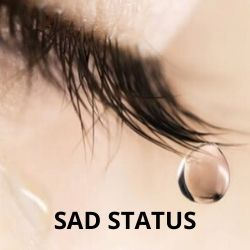 200 Sad Status And Quote For Whatsapp Facebook And