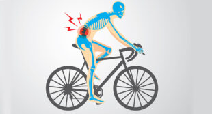 Body for a Cycling